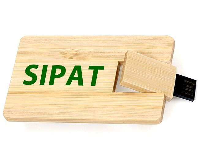 https://www.criativebrindes.com.br/content/interfaces/cms/userfiles/produtos/pencar-madeira-personalizada-para-brindes-cipa-e-sipat-730.jpg